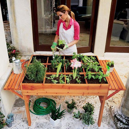 Planting the garden at home.